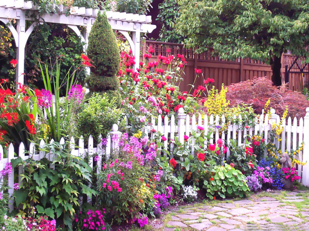 English Cottage Garden with white picket fence